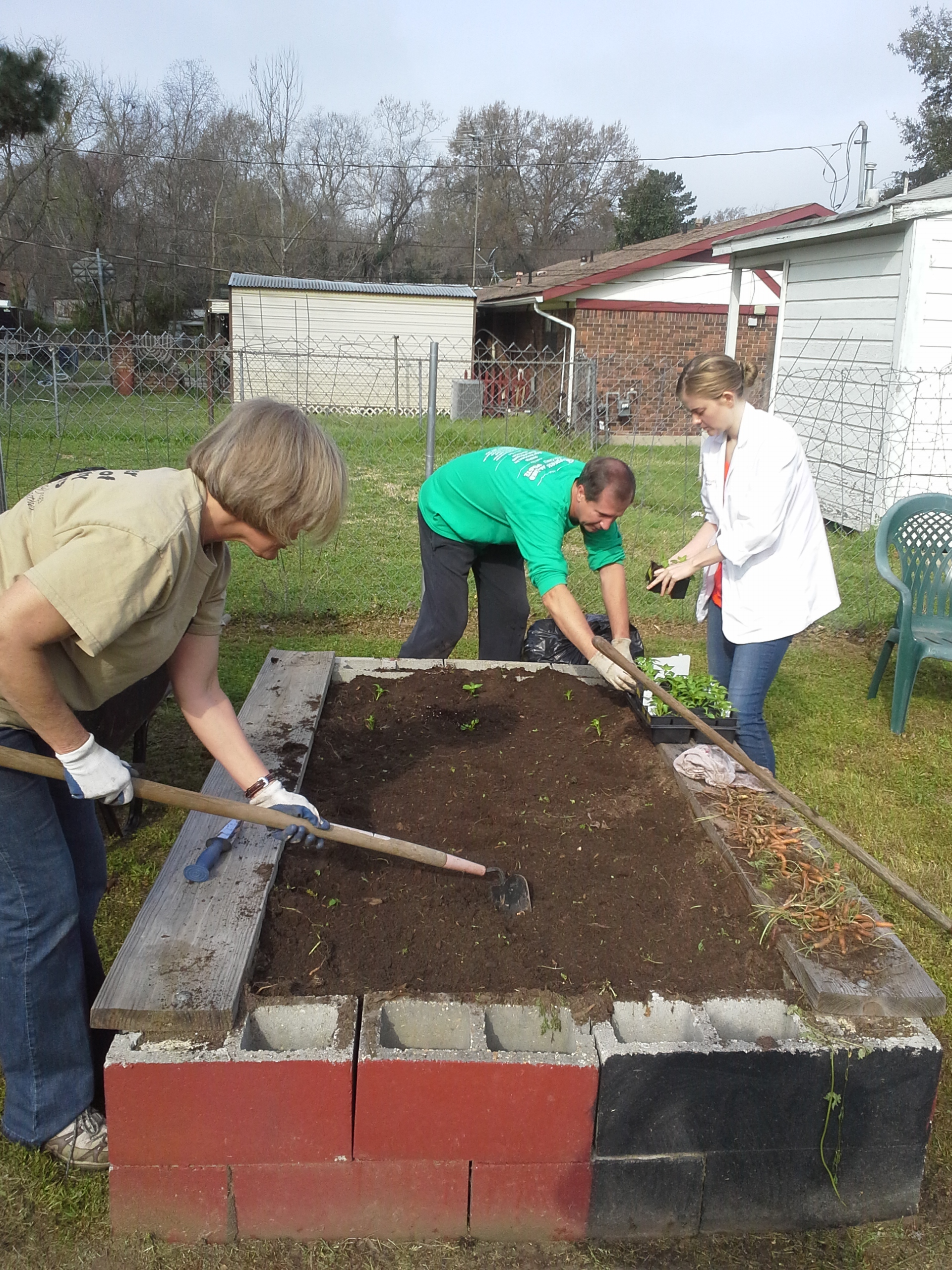 Community gardens bring nutritious food options to urban areas