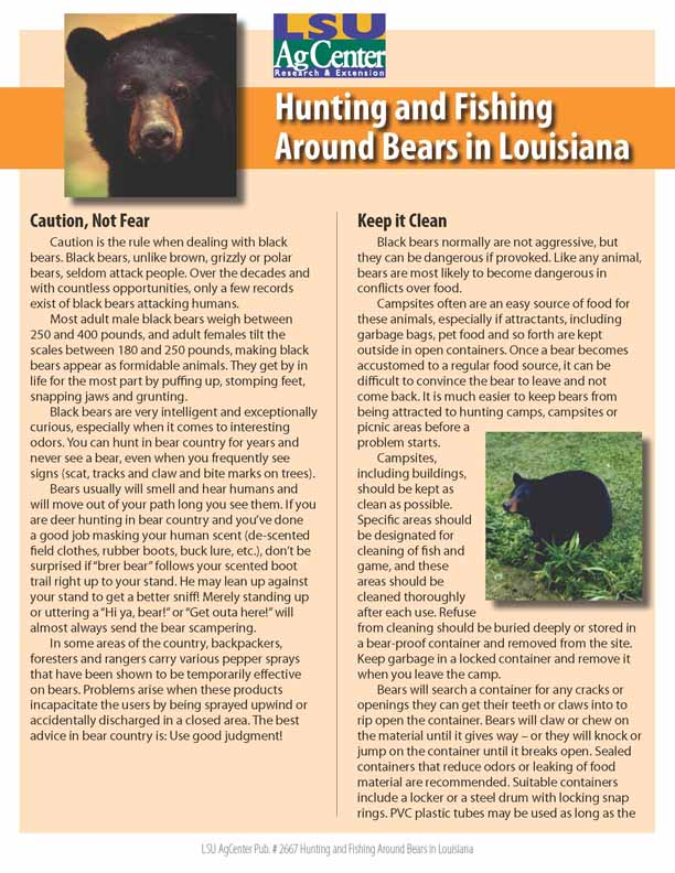 Hunting and Fishing Around Bears in Louisiana