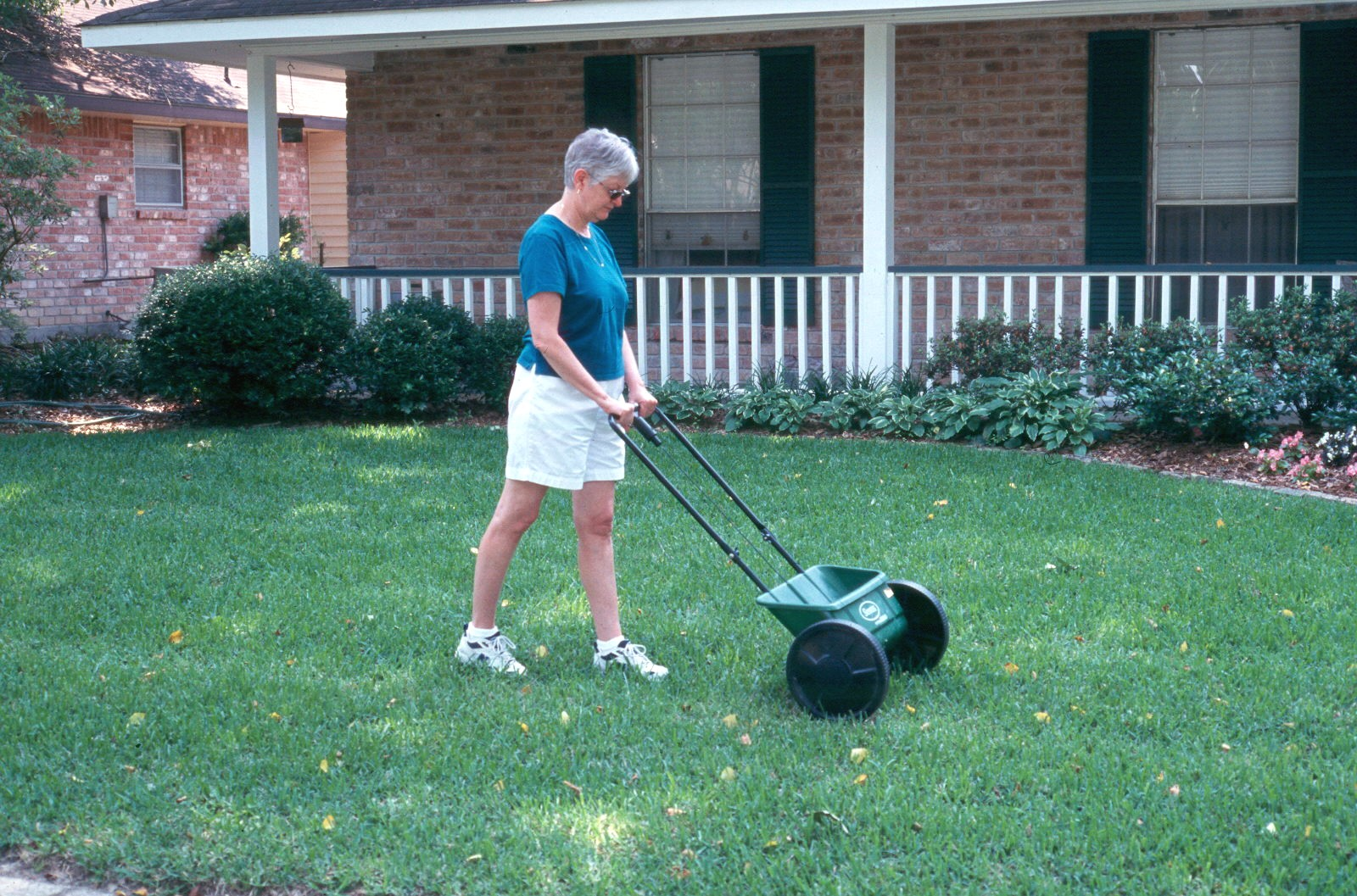 Home Lawn Chemical Weed Control Guide