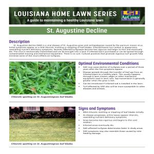 month by month gardening in louisiana