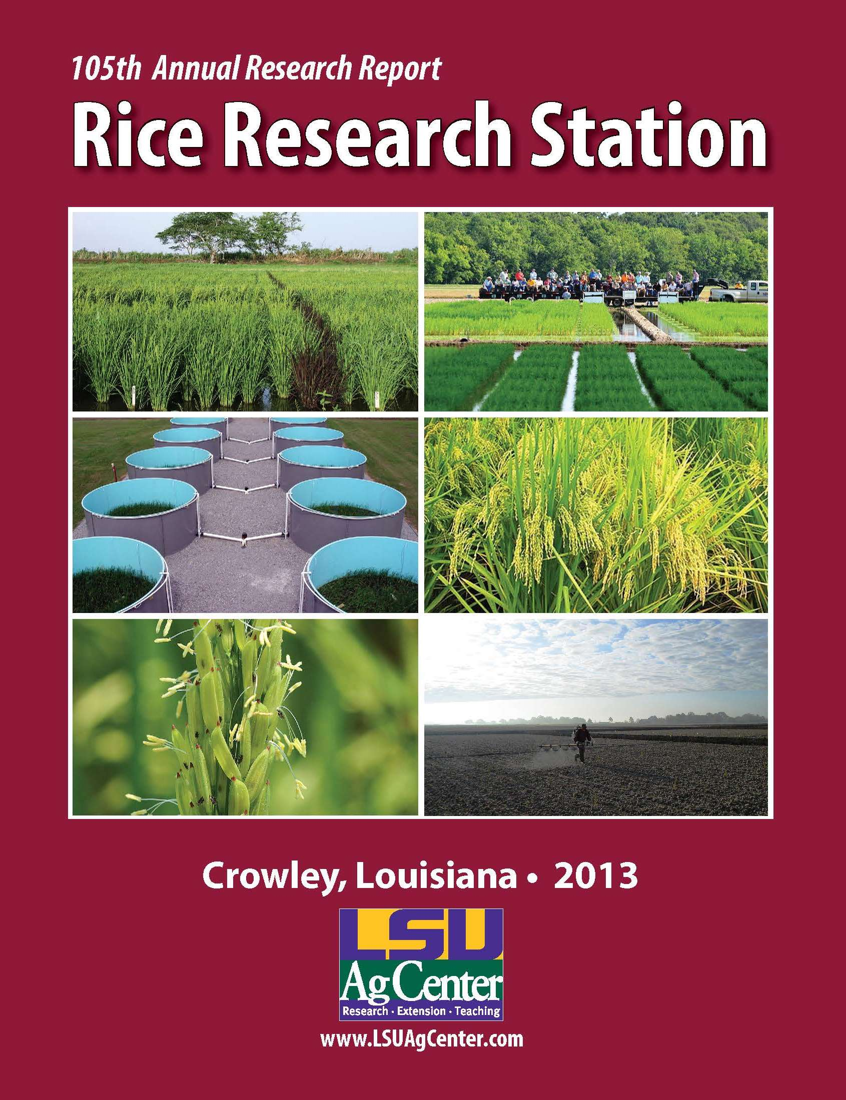 2013 Rice Research Station Annual Report