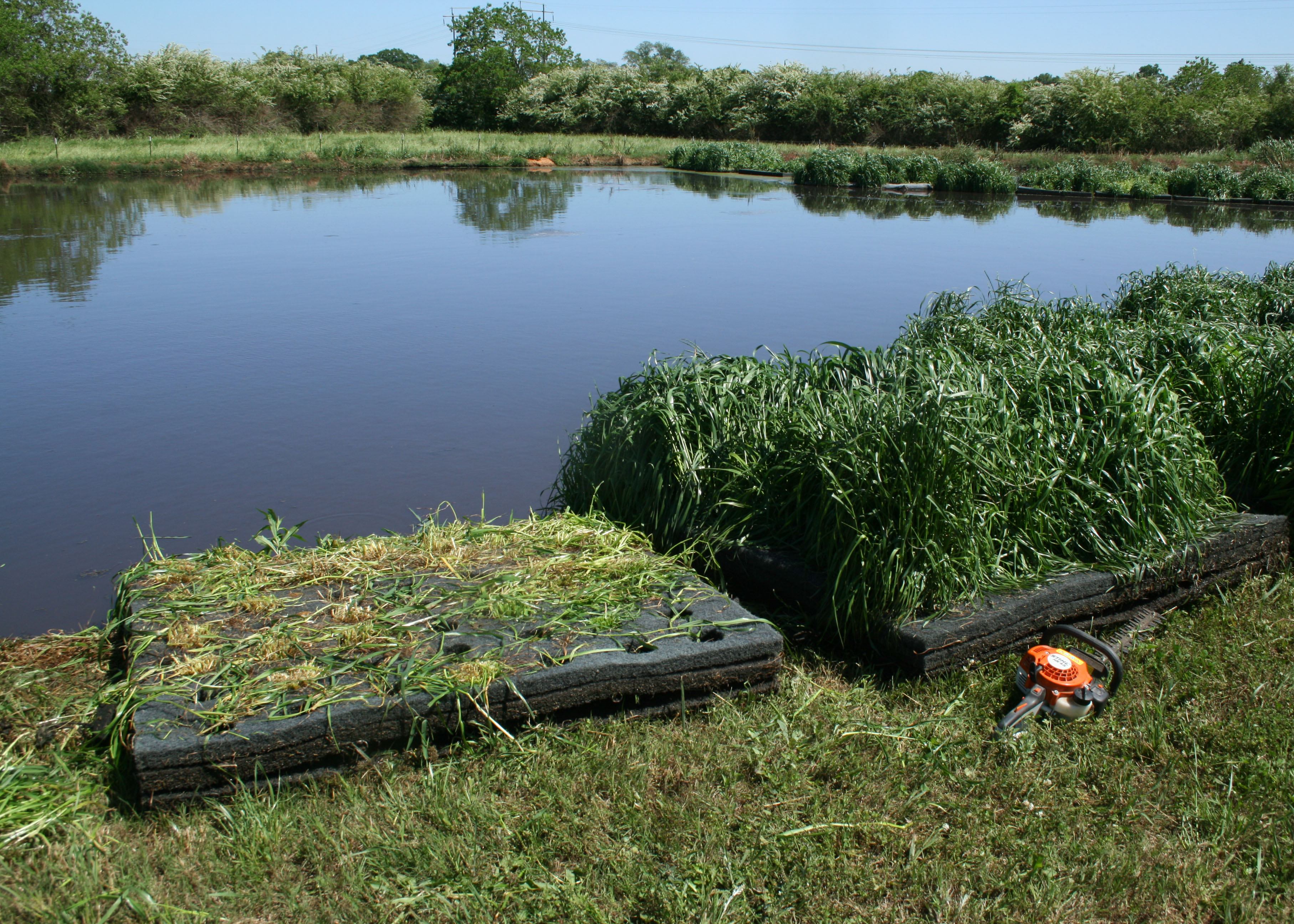 Treatment of Human Wastewater Using Floating Wetlands Systems