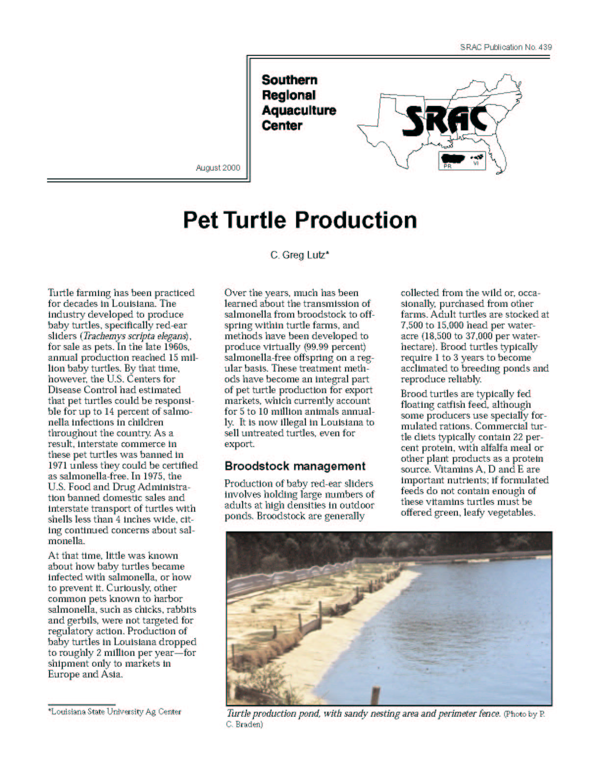 Pet Turtle Production