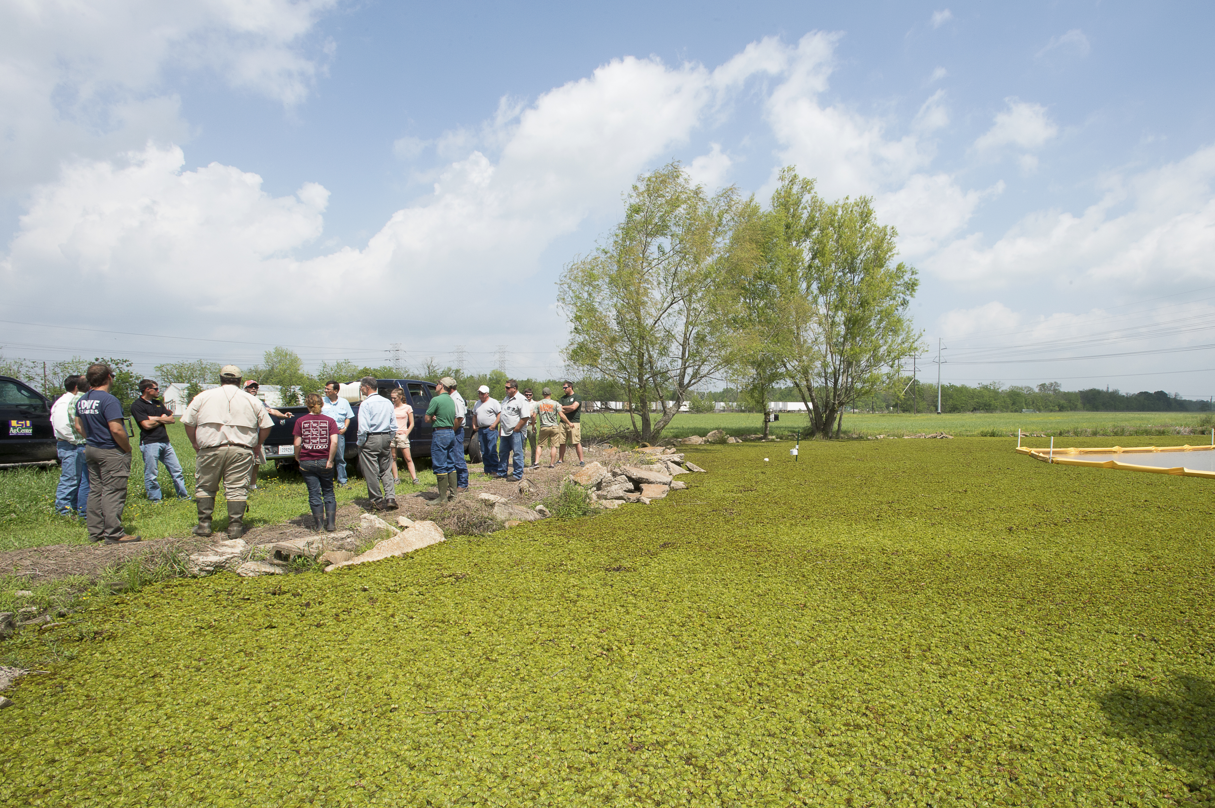 Workshop focuses on biocontrol for giant salvinia