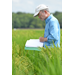 Update on Hybrid Rice Research