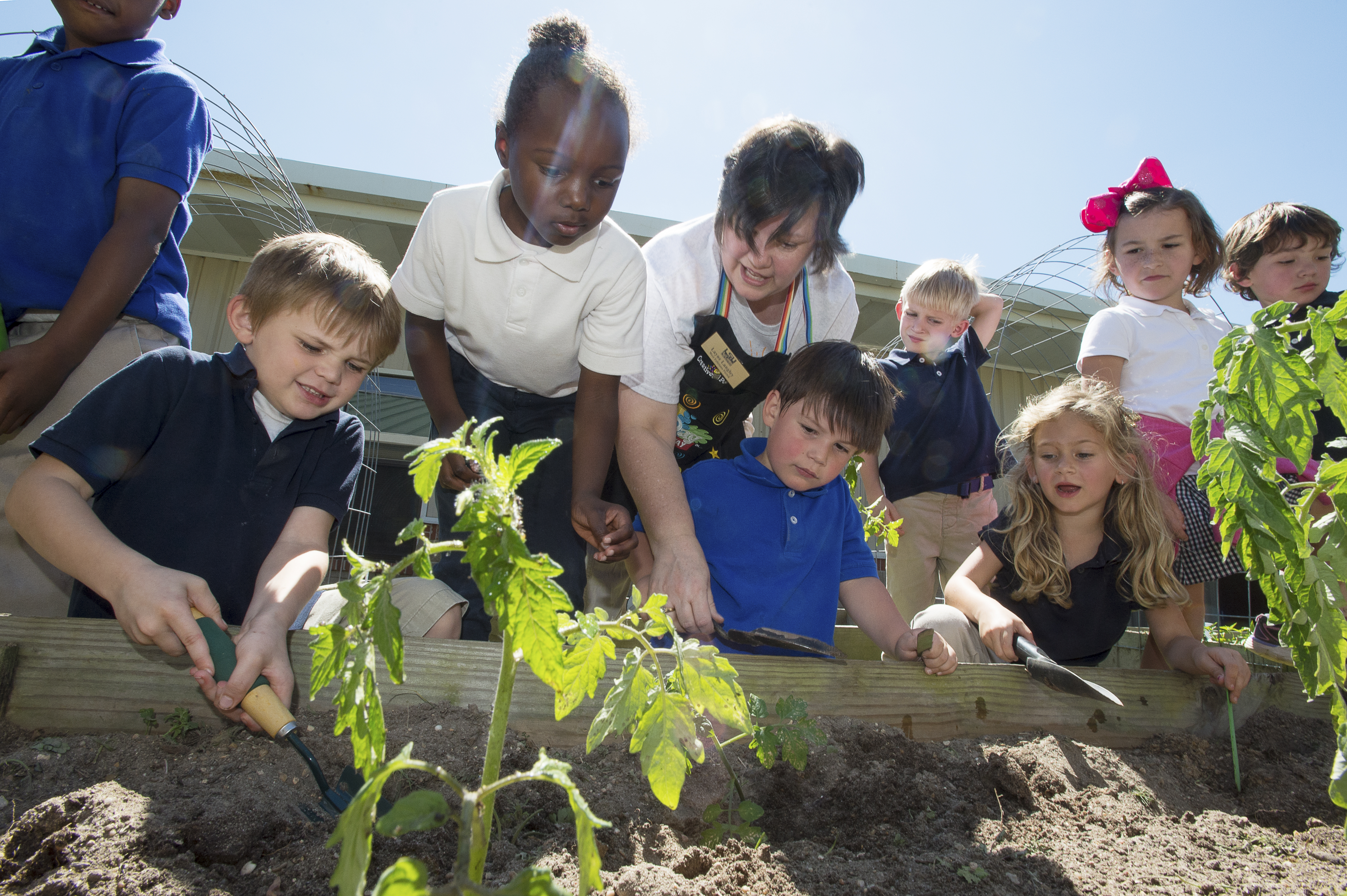 Donated fence helps protect garden where children learn about plants, nutrition