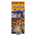 Small Hive Beetles