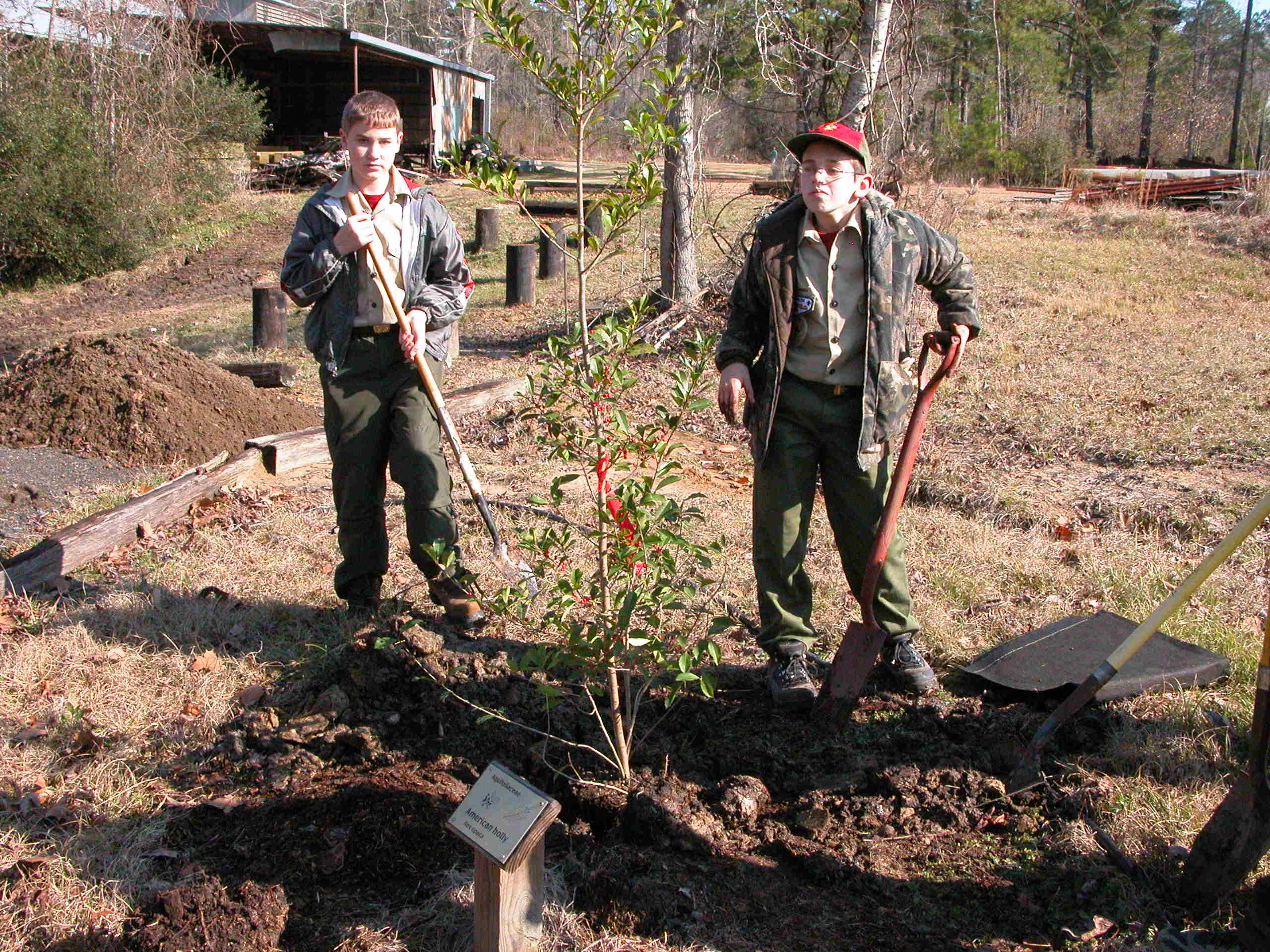 Arbor Day activities set for Jan. 20 at LSU AgCenter Botanic Gardens in Baton Rouge