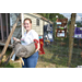 4-H'er starts new livestock show business