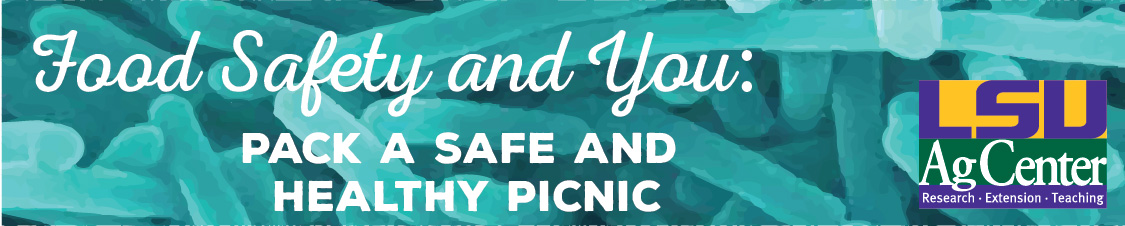 Food Safety and You - Pack a Safe and Healthy Picnic