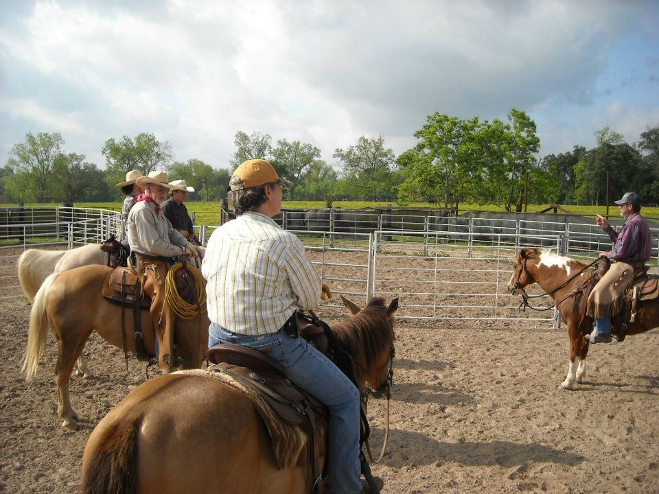 Louisiana Master Horseman program supports industry
