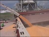 Large Corn Crop Creates Storage Problems