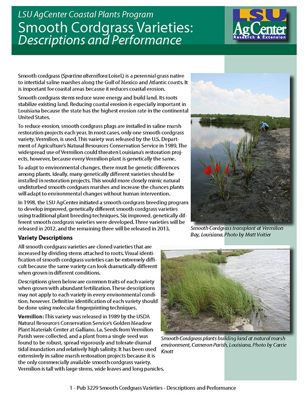 Smooth Cordgrass Varieties: Descriptions and Performance