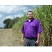 LSU AgCenter names new cotton, corn, grain sorghum specialist