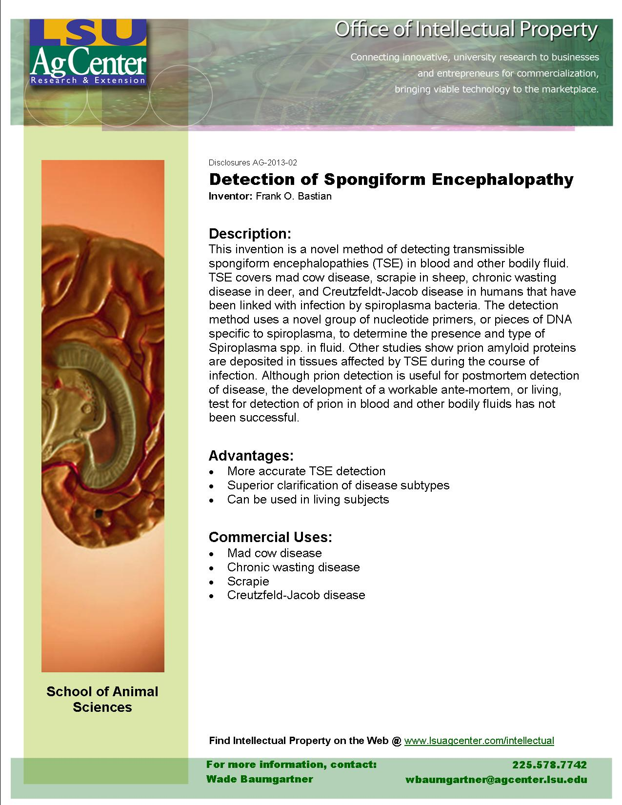 Detection of Spongiform Encephalopathy