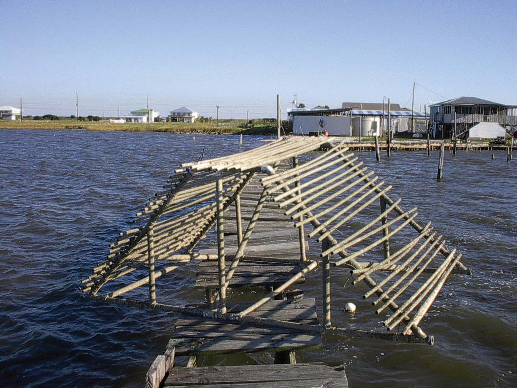 Bioengineered Wave Breaks Grow Oysters, Help Restore Coast