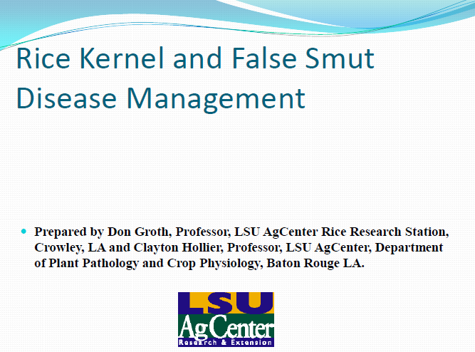 Rice Kernel and False Smut Disease Management