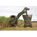 Sugarcane harvest doing well at halfway point