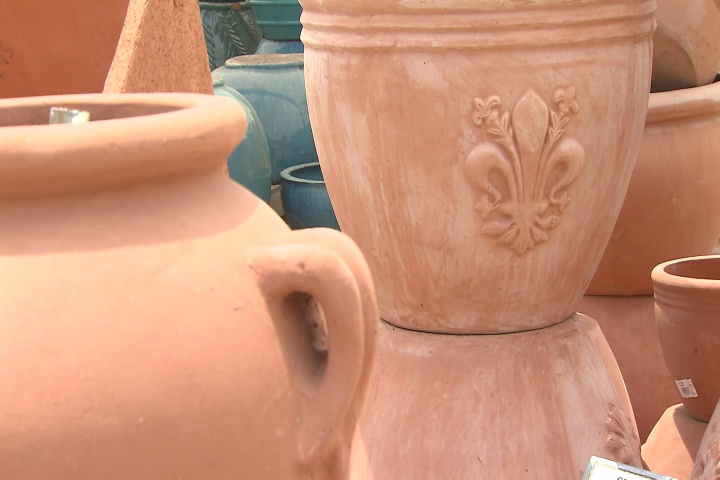 Pots can help plants reach their potential
