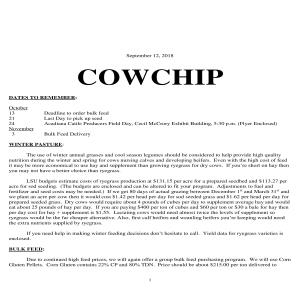 Cowchip - September 2018