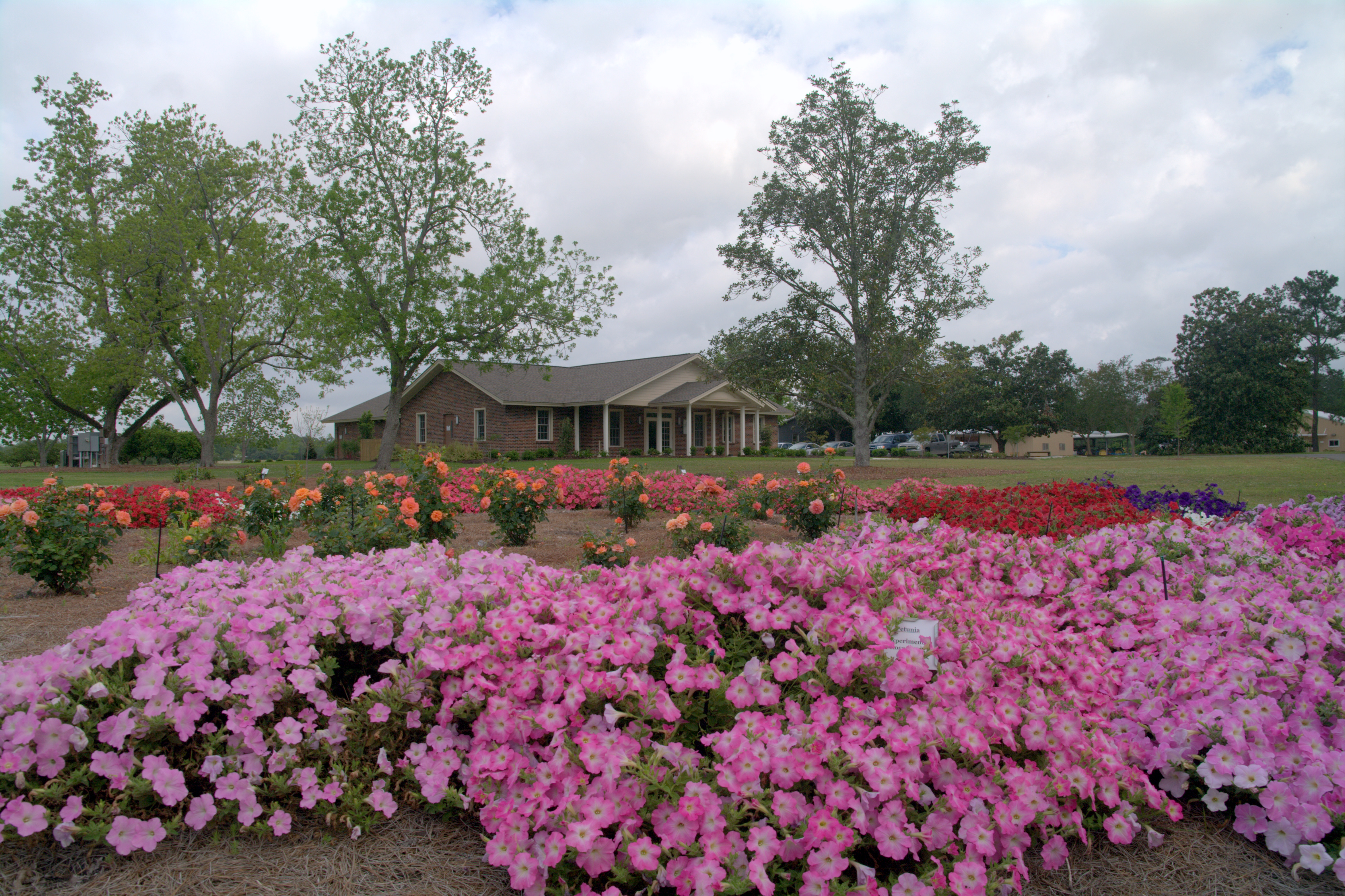 Stroll through Hammond Research Station gardens May 8