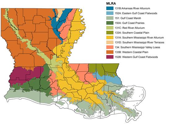 Southern Louisiana Map.An Overview Of Louisiana Soils