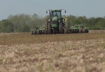 Wet weather affects Louisiana rice planting
