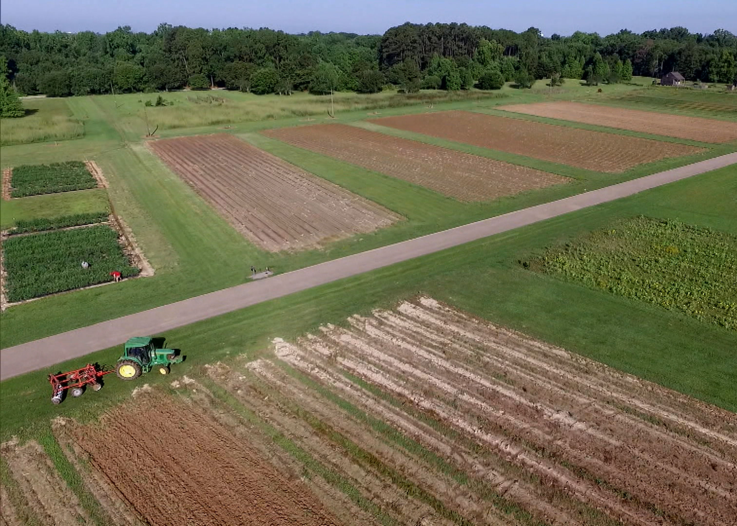 aerial of research plots.jpg thumbnail