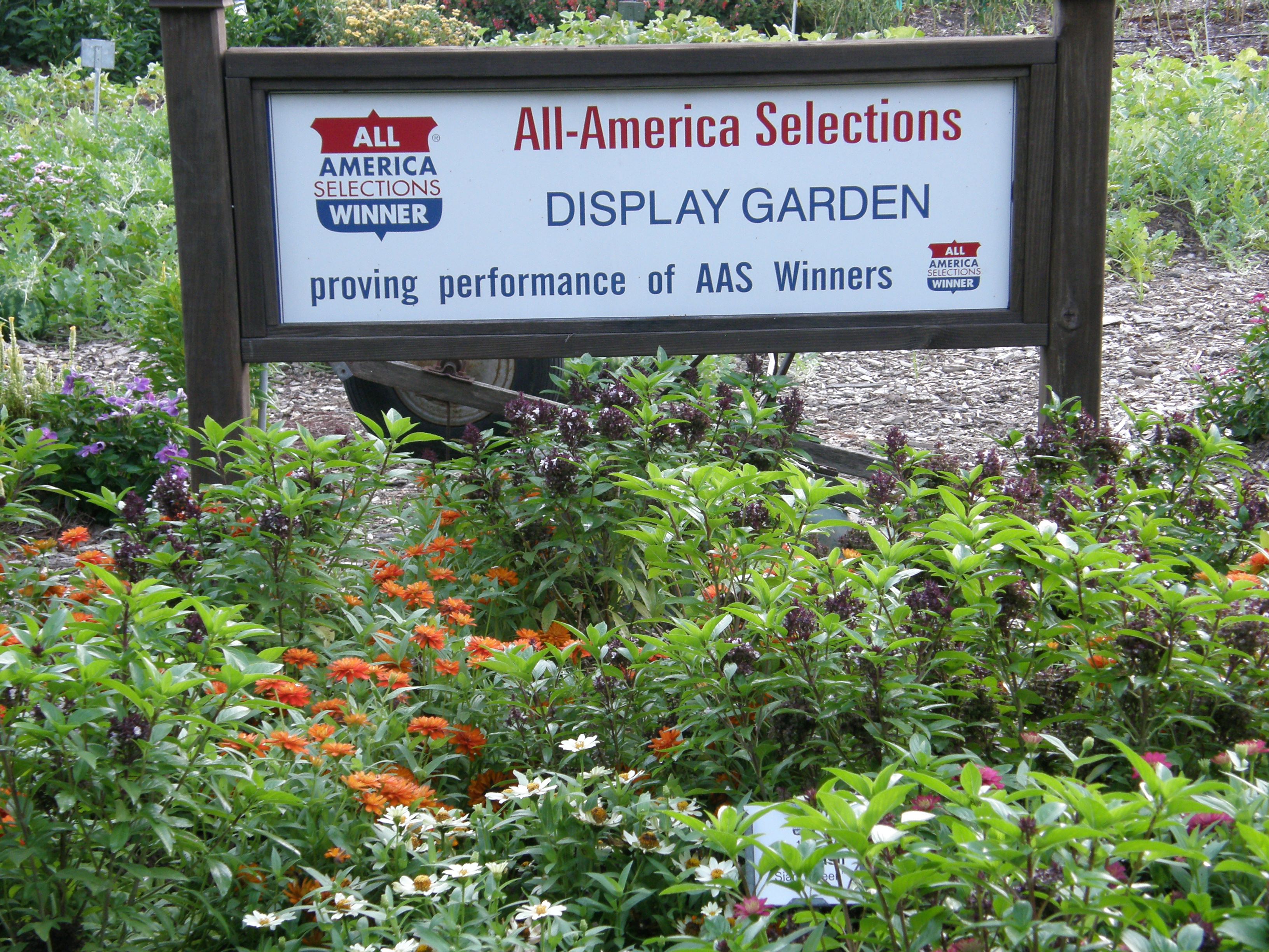 AAS Display Garden Sign