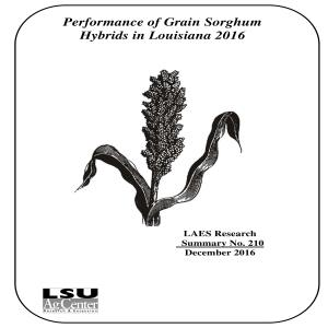 Performance of Grain Sorghum Hybrids in Louisiana 2016