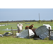 Hurricane damage causes problems for Louisiana cattle, poultry producers
