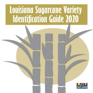Louisiana Sugarcane Variety Identification Guide 2020
