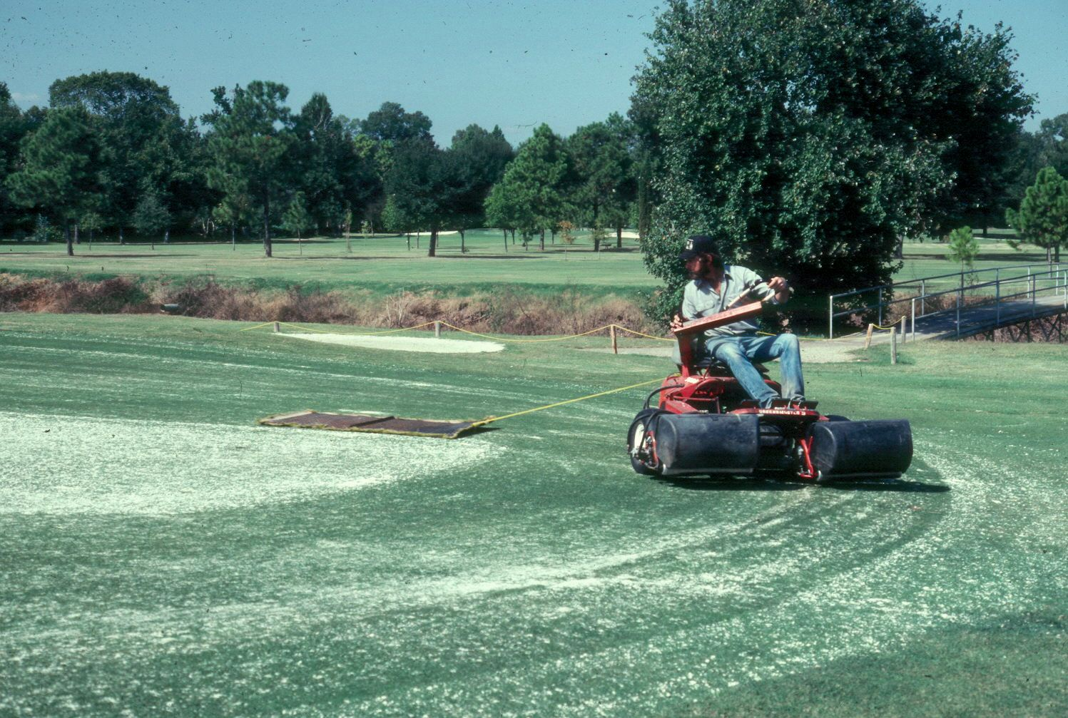 Topdressing Turfgrass Sod