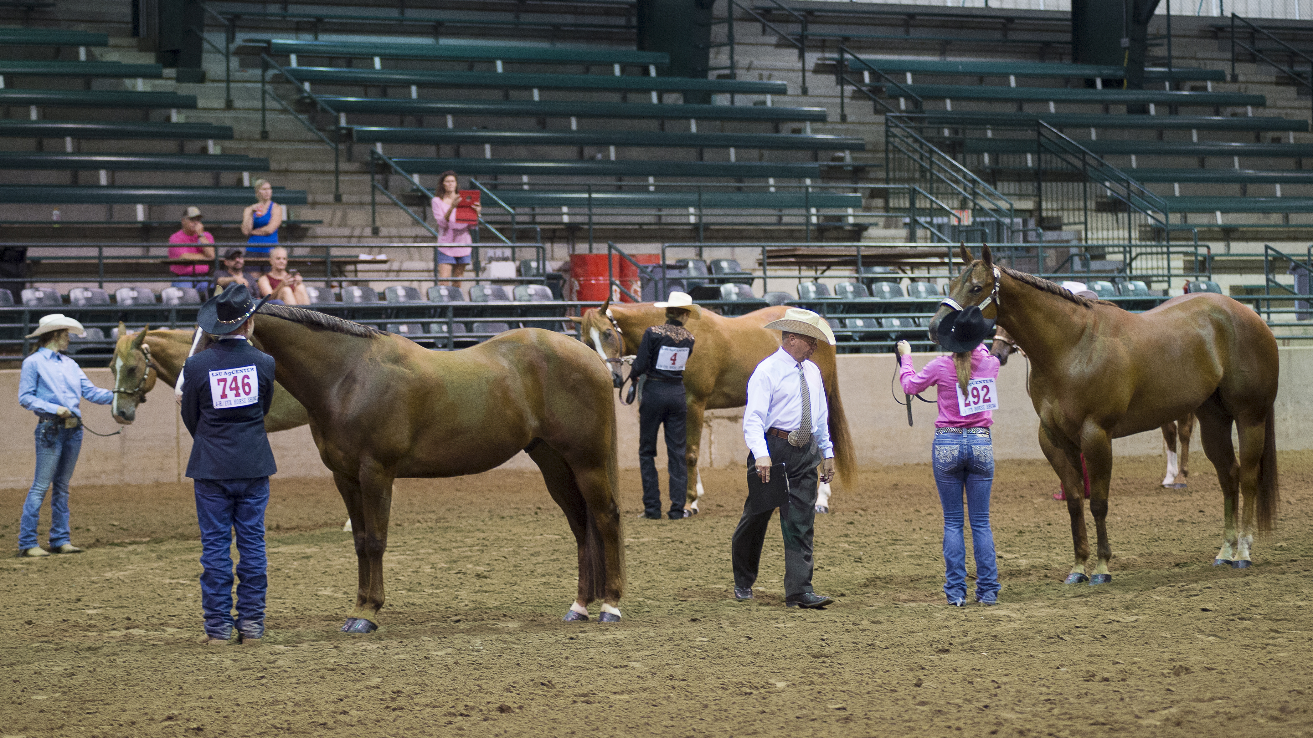 4-H, FFA State Horse Show results released