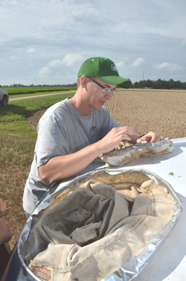 Entomology graduate student Bryce Blackman counts stink bugs in a sweep net