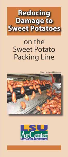 Reducing Damage to Sweet Potatoes on the Sweet Potato Packing Line