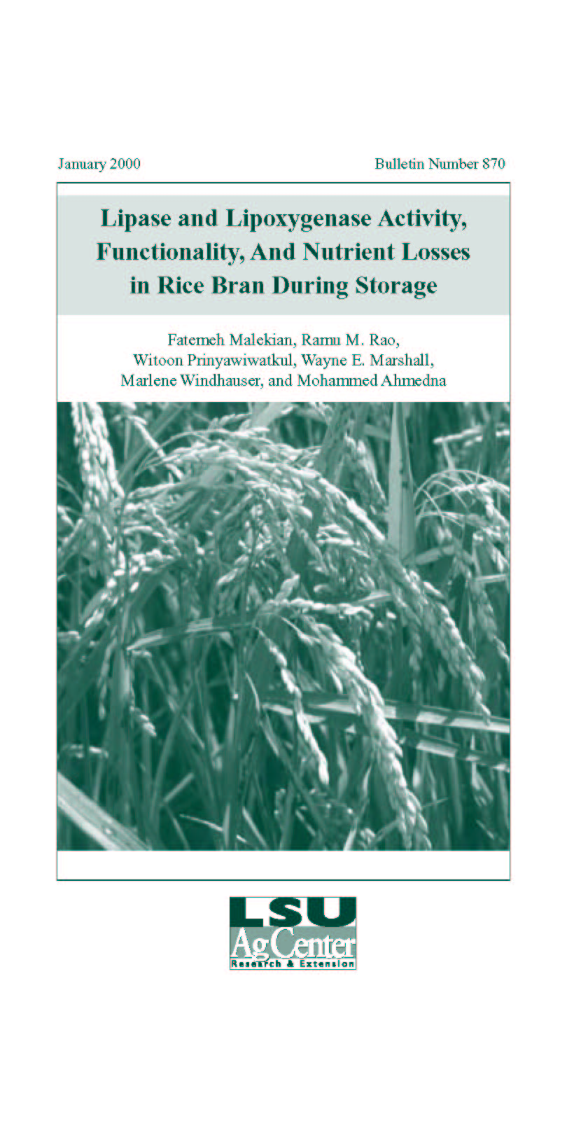 Lipase and Lipoxygenase Activity Functionality and Nutrient Losses in Rice Bran During Storage (1999)