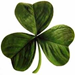 The 4-H Clover