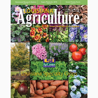 Louisiana Agriculture Spring 2016 - PDF