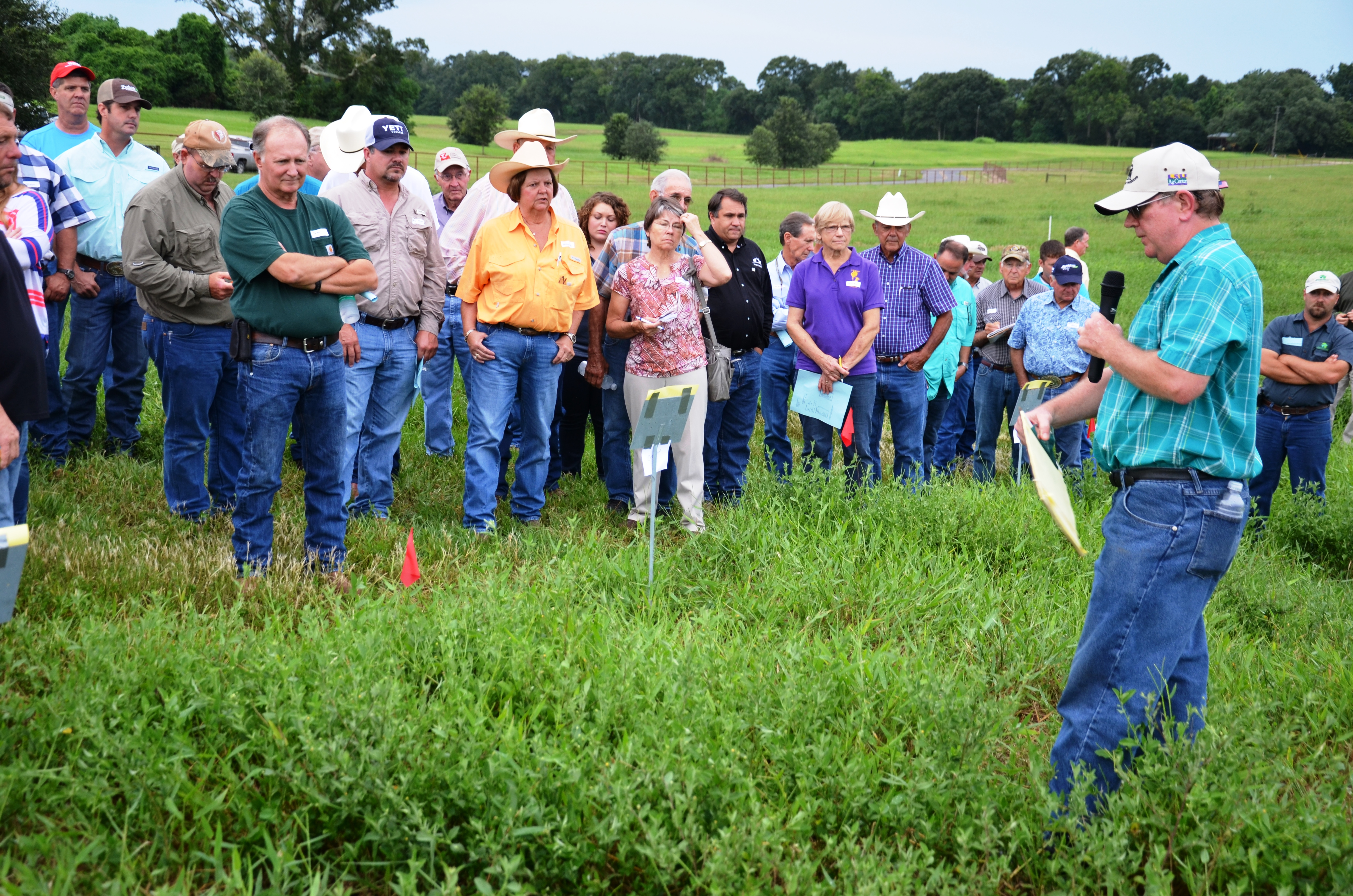 Beef field day set for March 18 in Jeanerette