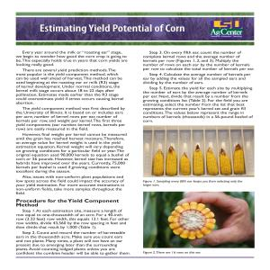 Estimating Yield Potential of Corn