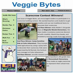 Veggie Bytes Newsletter Series 8