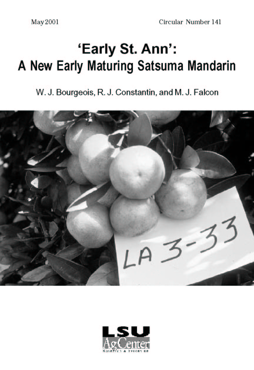 Early St. Ann: A New Early Maturing Satsuma Mandarin (May 2001)