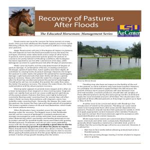 The Educated Horseman: Recovery of Pastures After Floods