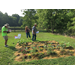 2020 Adult Fall Vegetable Garden Contest