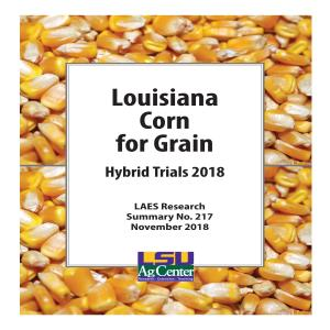 Louisiana Corn for Grain Hybrid Trials 2018