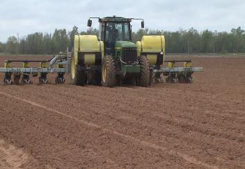 Louisiana corn planting behind schedule