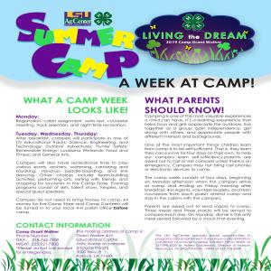 A Week at Camp!