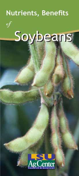 Nutritional Benefits of Soybeans