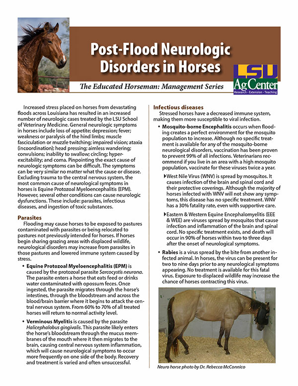 Post-Flood Neurologic Disorders in Horses